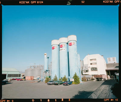 Negative: Diamond Flour Factory
