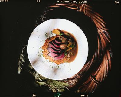Negative: Venison Dish At Michael's Restaurant
