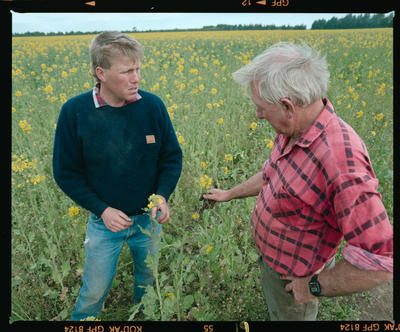 Negative: Mulholland Farm Two Men