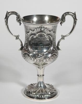 Trophy Cup, Wellington Anniversary Day Regatta (Benson Cup)