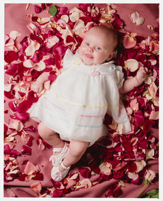 Negative: Baby Rose In Rose Petals