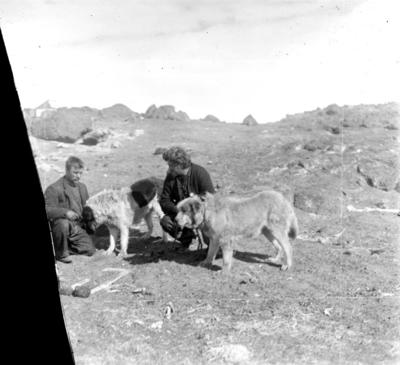 Photographic negative; 1917; 1981.110.165