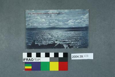 Postcard: Wellington Harbour