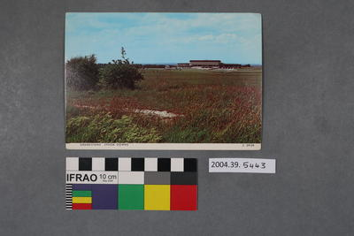 Postcard: Grandstand Epsom Downs