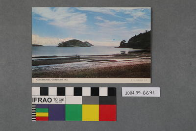 Postcard: Coromandel Coastline, N.Z.