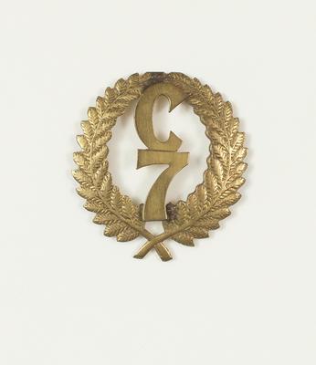 Badge: military cap