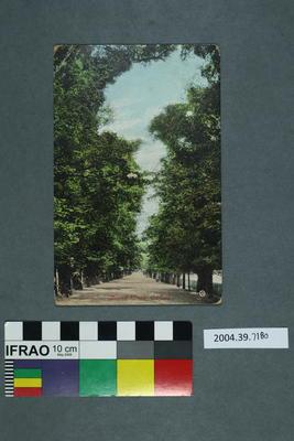 Postcard: Broad Walk, Oxford