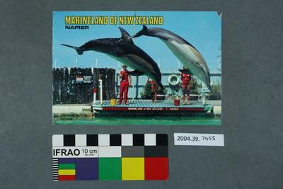 Postcard: Marineland of New Zealand, Napier