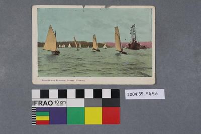 Postcard: Regatta and Flagship