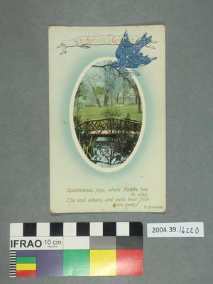 Postcard: In Nature's Garden