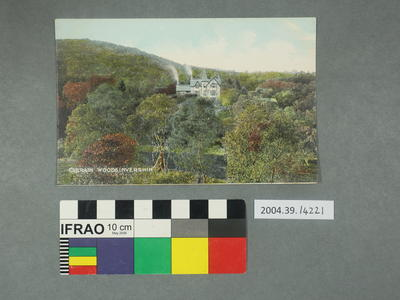 Postcard: Culrain Woods Invershin