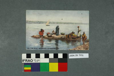 Postcard: On The Nile