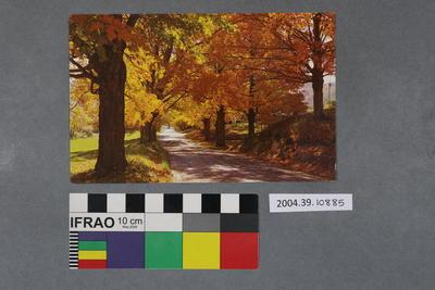 Postcard of a road