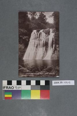 Postcard: Lower Waitakerei Falls