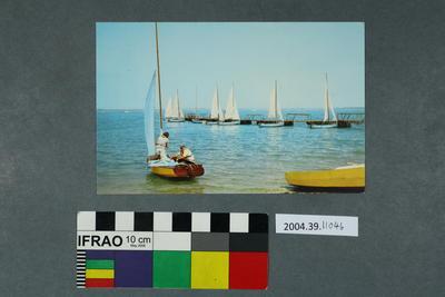 Postcard of sail boats