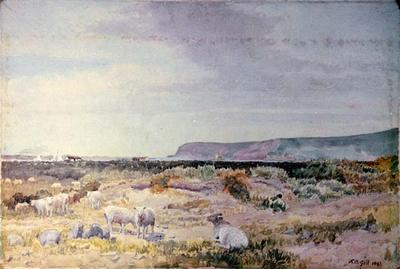 Painting: Sumner Flats