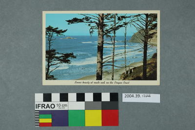 Postcard: Scenic beauty at roads end, on the Oregon Coast