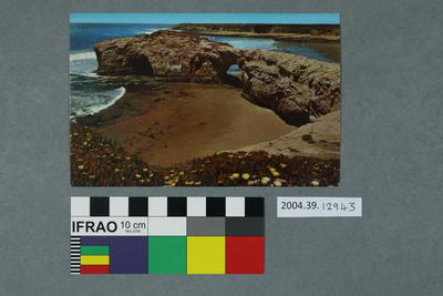 Postcard of Natural Bridges State Park