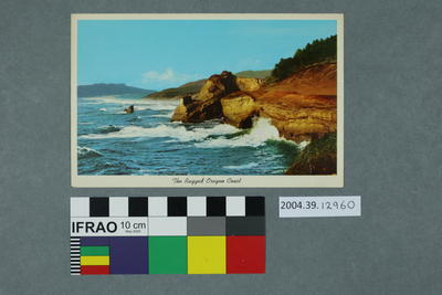 Postcard: The Rugged Oregon Coast