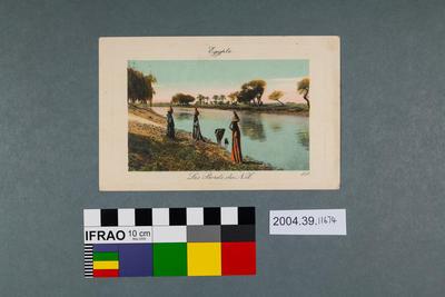 Postcard: Egypte