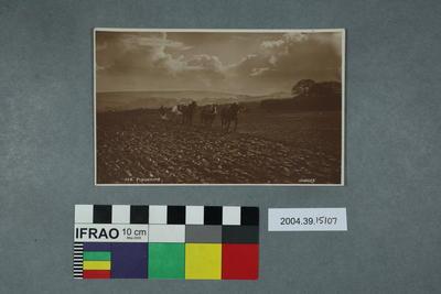 Postcard: Ploughing