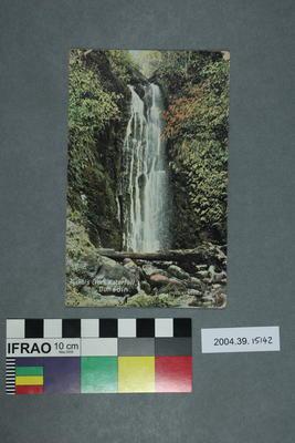 Postcard: Nichol's Creek Waterfall, Dunedin