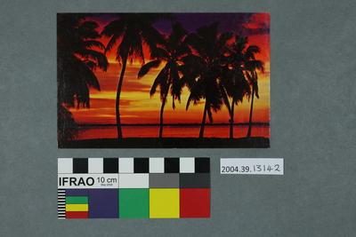 Postcard: A Beautiful Florida Sunset