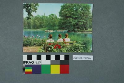 Postcard: Wörlitzer Landschaftspark, Blick von der Roseninsel auf den See