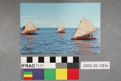 Postcard: Sailing boats scene