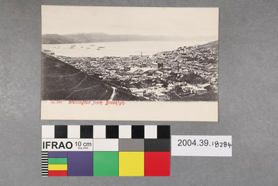 Postcard: Wellington from Brooklyn