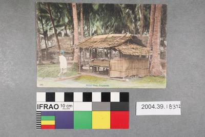 Postcard: Malay Shop