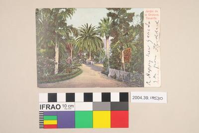 Postcard: Jardin de la Orotava Tenerife