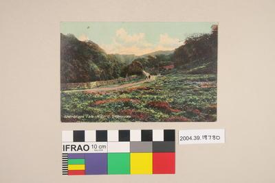 Postcard: Sherbrook Vale, Milford