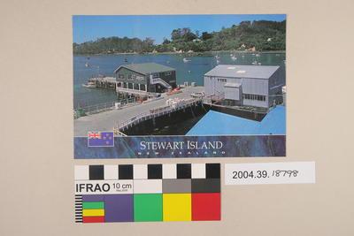 Postcard: Stewart Island, New Zealand