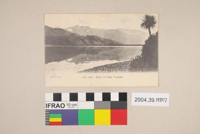 Postcard: Head of Lake Wanaka