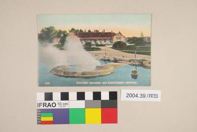 Postcard: Malfroy Geysers and Sanatorium, Rotorua