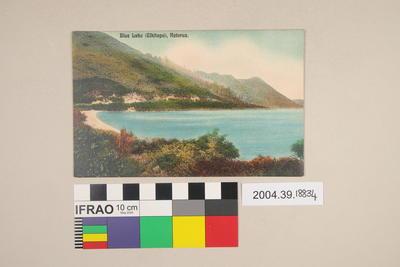 Postcard: Blue Lake (Tikitapu), Rotorua