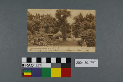 Postcard: Hospital Grounds, Timaru, New Zealand