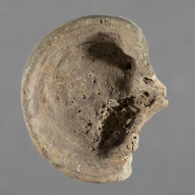 Horn: fragment