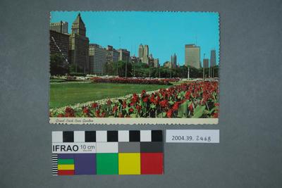 Postcard: Grant Park Rose Garden