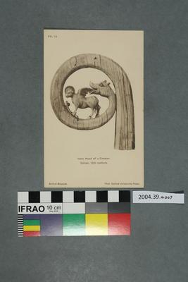 Postcard: Ivory Head