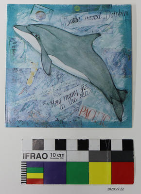 Card: Bottle nosed Dolphin