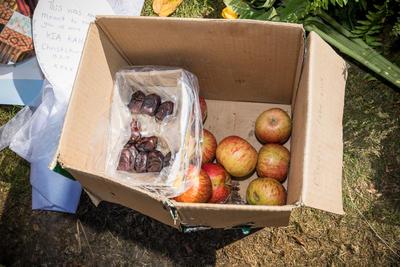 Photograph: Fruit