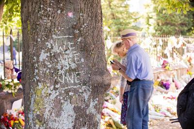 Photograph: Tree Tribute