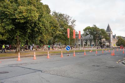 Photograph: Traffic Cones
