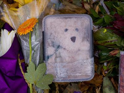 Photograph: Teddy in a Box