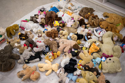 Photograph: Soft Toys