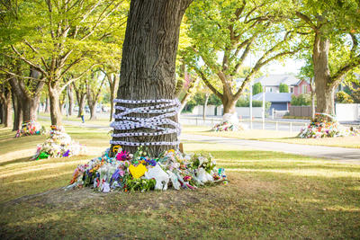 Photograph: Tree Tributes