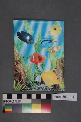 Postcard of a fish scene