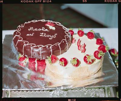Negative: Butler-Thistoll Wedding Cake